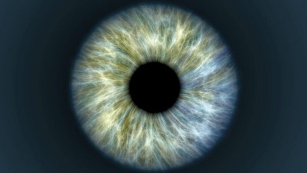 close up of an eye, the colour is a light grey