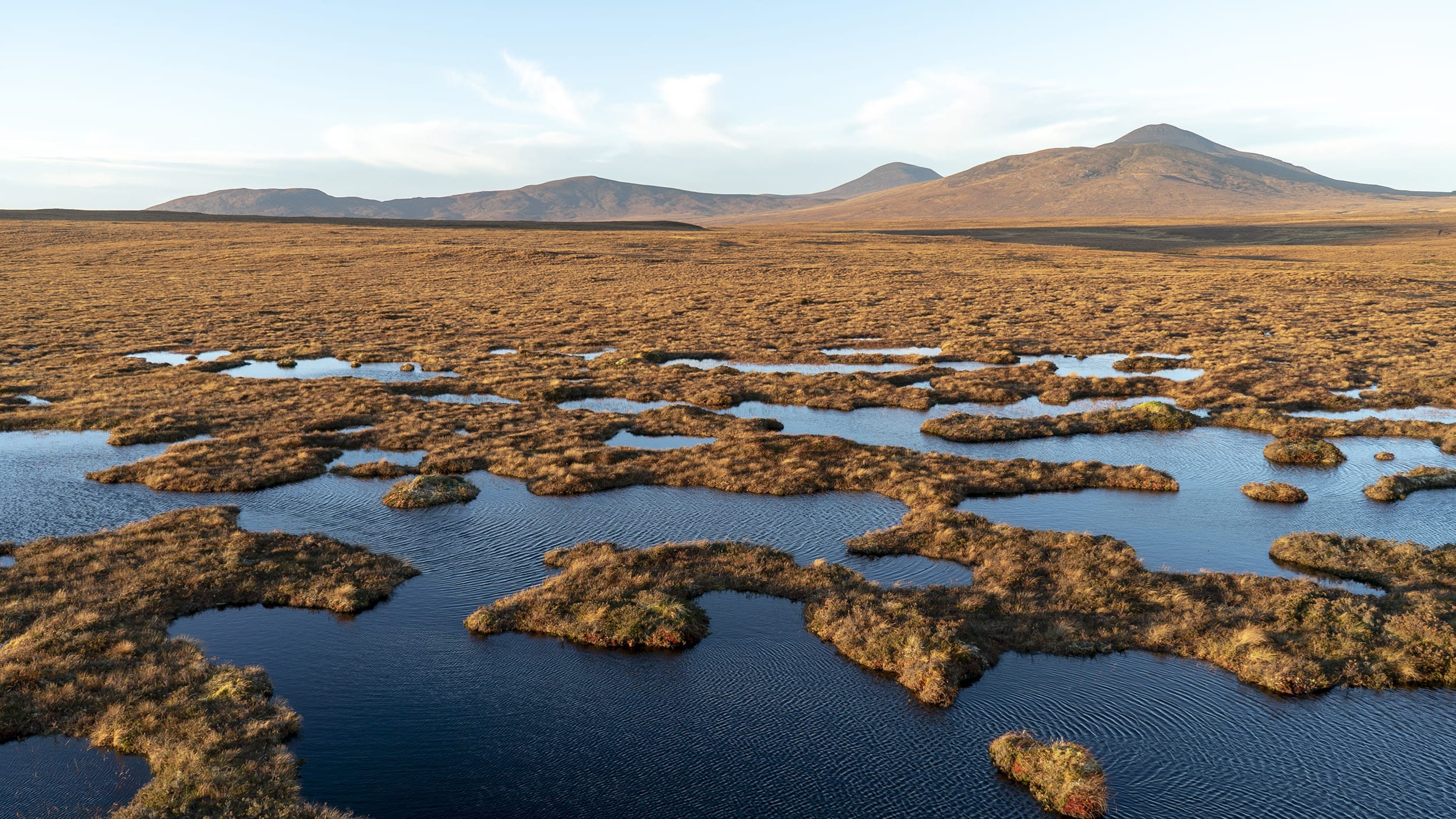 The Flow Country, RSPB reserve, Forsinard, Scotland, taken whilst on Cryptic Artist residency, 2019. Photo by Kathy Hinde